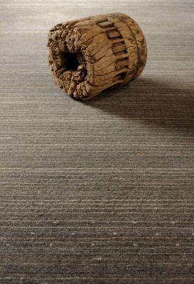 Tapis laine desert cendr 250x350 toulemonde bochart for Tapis toulemonde bochart soldes