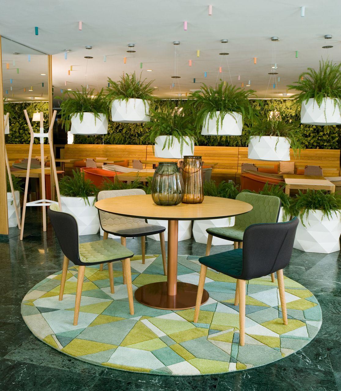 tapis laine tavern vert rond 230 cm toulemonde bochart. Black Bedroom Furniture Sets. Home Design Ideas