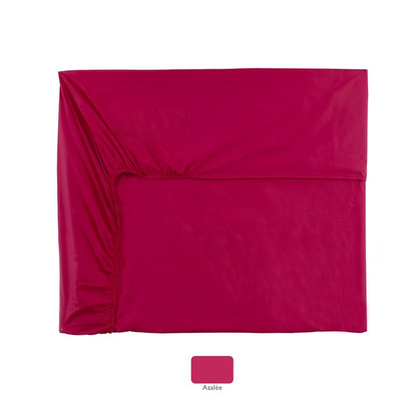 Drap housse percale uni royal line azal e 80x200 essix for Drap housse 80x200