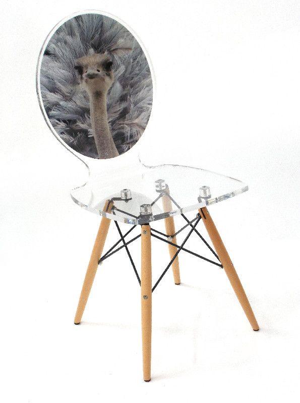 Chaise verre acrylique graph pieds bois autruche acrila - Poids d une autruche ...