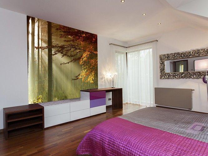 papier peint intiss sous bois 250x250 d coration. Black Bedroom Furniture Sets. Home Design Ideas